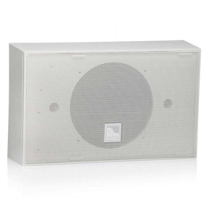 Трансляционная акустика AMC iSpeak 6 White papyrus (RAL9018)