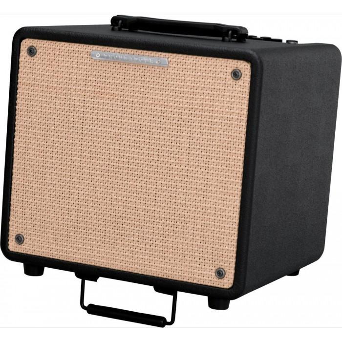 Комбоусилитель для акустических инструментов Ibanez T80N