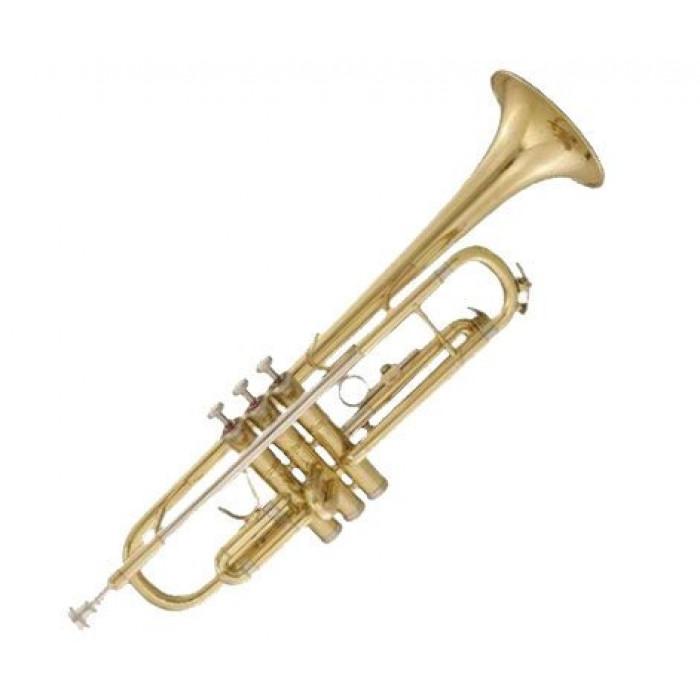 Труба Maxtone TTC60L2 (TTC234L)