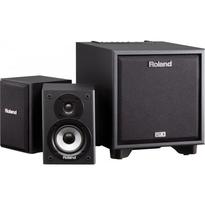 Roland CM110