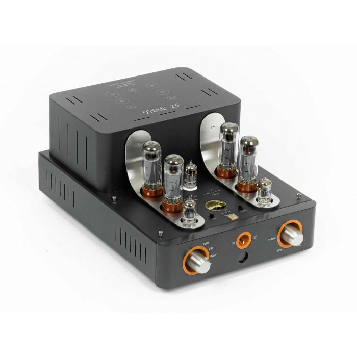 Плата ЦАП Unison Research Triode 25 Optional USB DAC DSD 128